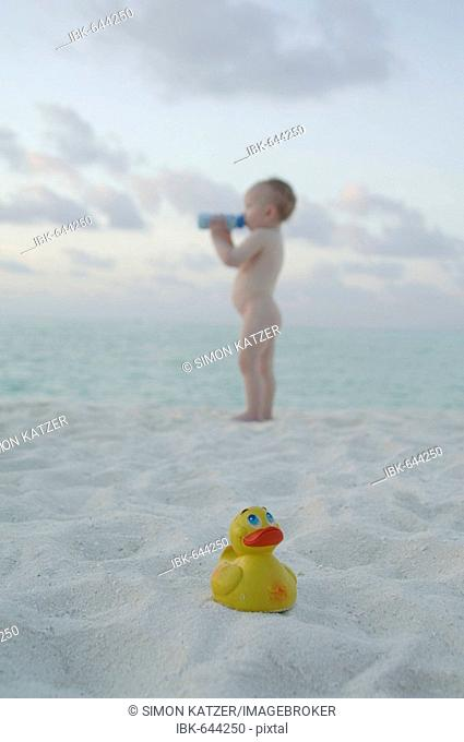 Small child drinking from bottle and a rubber ducky on the beach, Diffushi Island, Holiday Island, Southern Ari Atoll, Maldives, Indian Ocean