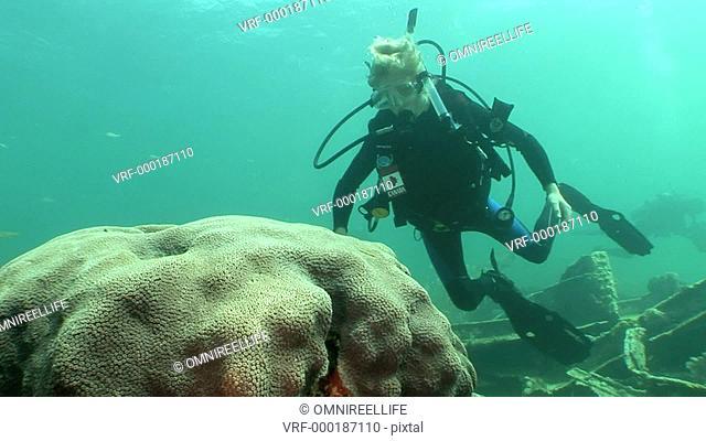 Two teenage scuba divers examining corals
