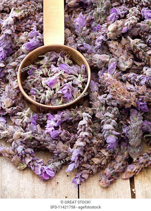 Lavender flowers with a measuring cup