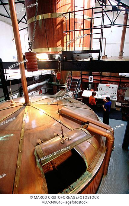 Washback. Lagavulin whisky distillery. Islay island. Scotland. UK