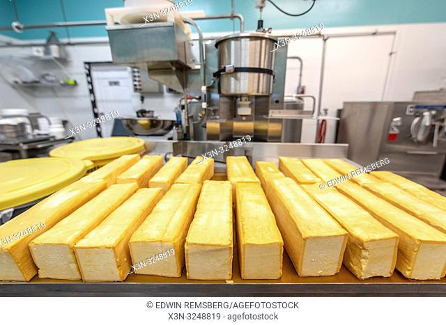 Blocks of freshly made cheese with machinery behind it at dairy processing facility, Pokomoke, Maryland