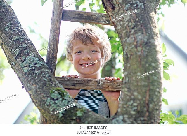 Portrait of boy climbing tree