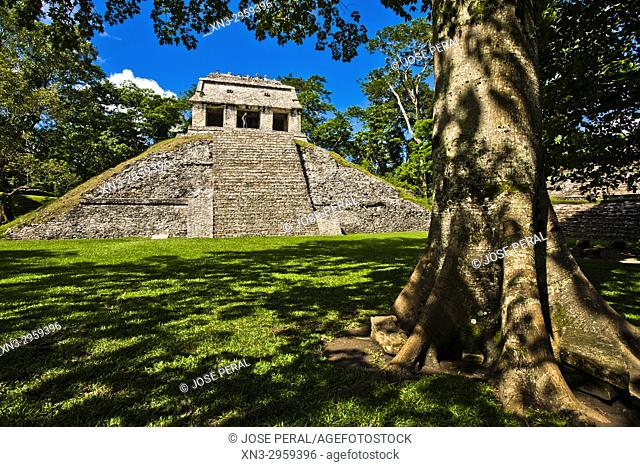 Temple of the Count, Templo del Conde, Maya archaeological site, Palenque, Chiapas State Mexico, Central America