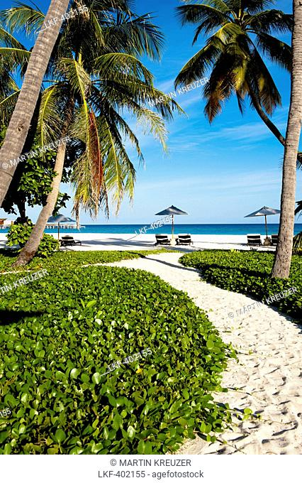 Palm trees and sunshades on the beach at Park Hyatt Maldives Hadahaa, Gaafu Alifu Atoll, North Huvadhoo Atoll, Maldives