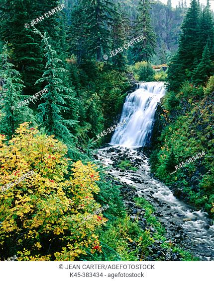 Christine Falls, Mount Baker-Snoqualmie National Forest. North Cascades, Washington. USA