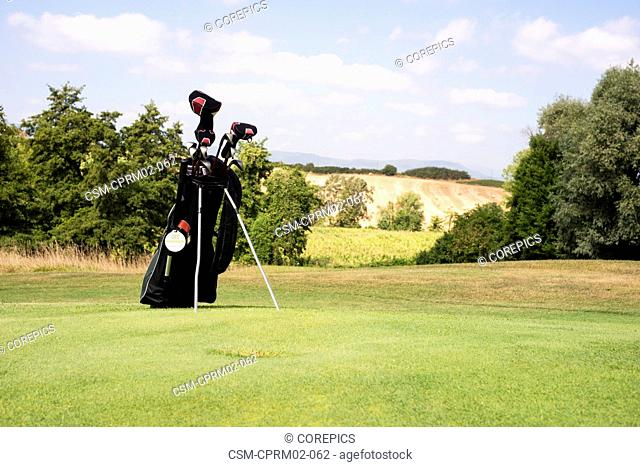 Golf bag with various clubs standing on the fairway of a lush golf course
