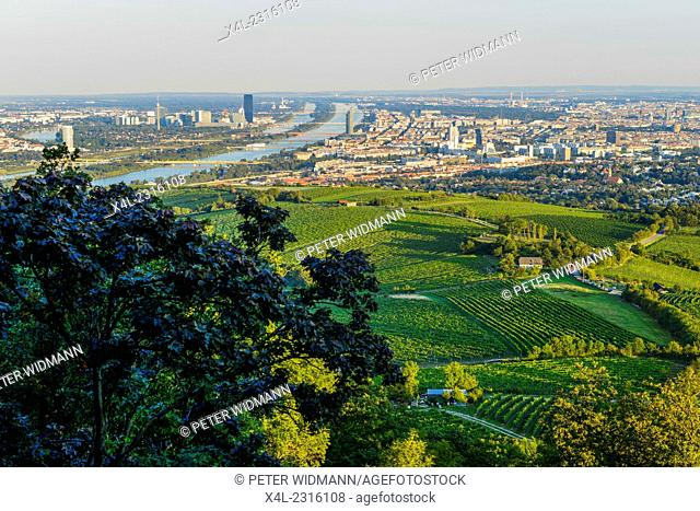 Wien, view from moutain Kahlenberg, Vienna, Austria, Central Europe, 19. district, Kahlenberg