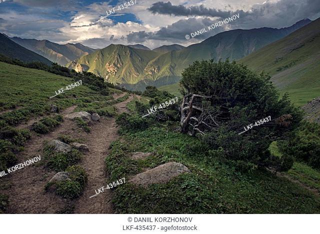 Arashal valley, Karakol Mountain Range, Tian-Shan Mountains, Kyrgyzstan