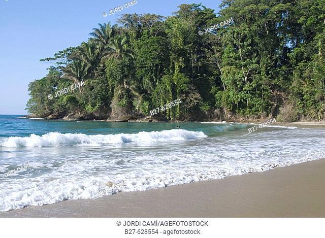 Punta Uva beach, located between Puerto Viejo and Manzanillo. Talamanca province. Costa Rica