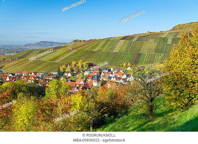 Germany, Baden-Wurttemberg, Weinstadt-Strümpfelbach (village), brook Strümpfel in the Remstal (valley), surrounded by meadow with scattered fruit treess and...