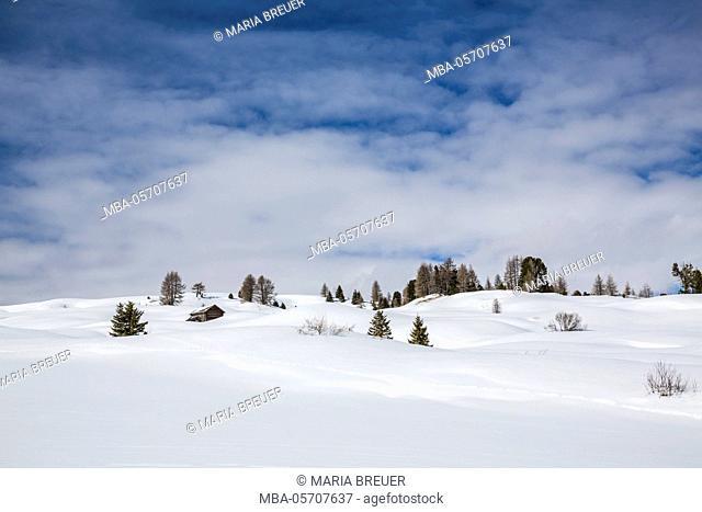 Snow scenery, skiing region of Alta Badia, South Tyrol, Alto Adige, the Dolomites, Italy, Europe