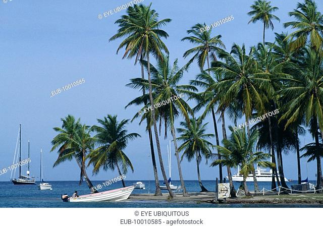 Cruise ship, yachts and motor boat in bay with beach and palms