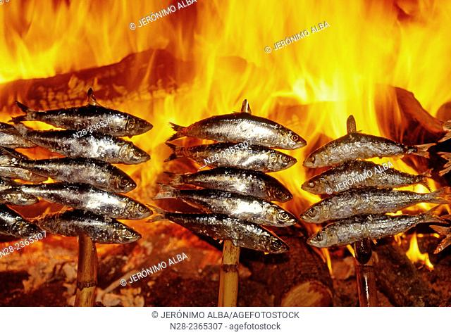 'Espetos de sardinas' (grilled sardines), Andalusian gastronomy, Andalusia, Spain