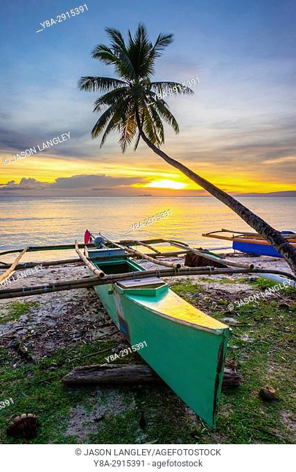 Palm tree and fishing boats on Paliton Beach at sunset, San Juan, Siquijor Island, Central Visayas, Philippines