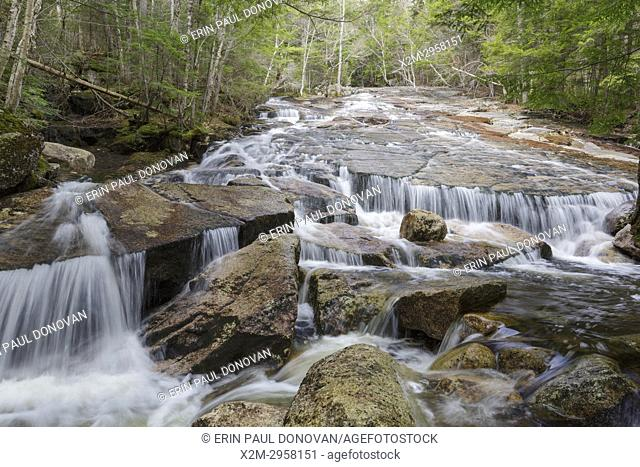 Cascade on Whitehouse Brook in Franconia Notch of Lincoln, New Hampshire on a spring day