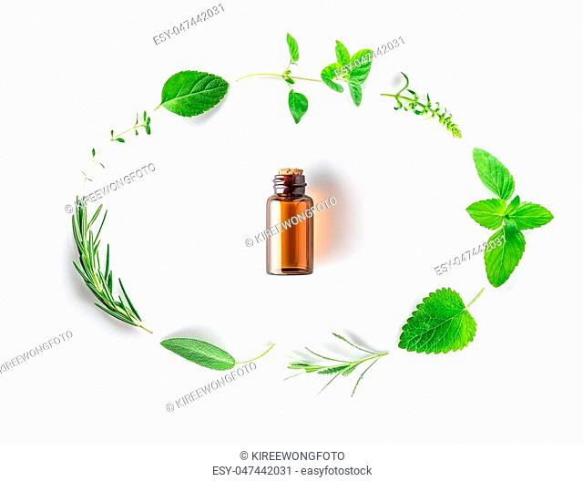 Bottle of essential oil with fresh herbal sage, rosemary, oregano, thyme, lemon balm, spearmint and peppermint setup with flat lay on white background
