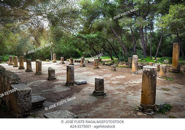 Algeria, Tipazza City, Roman ruins of Tipazza City, the forum