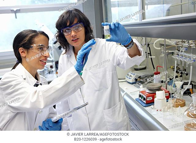Polymer Laboratory, Materials Physics Center is a joint center of the Spanish Scientific Research Council CSIC and the University of the Basque Country UPV/EHU