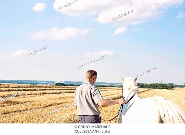 Rear view of man training white horse horse in field
