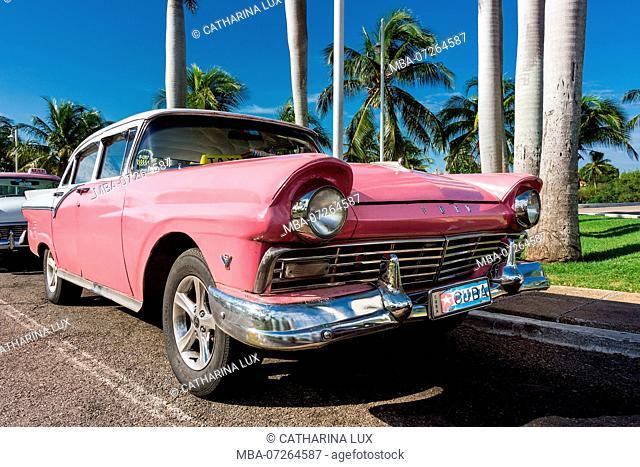 Cuba, Varadero peninsula, classic car under palm trees, Ford