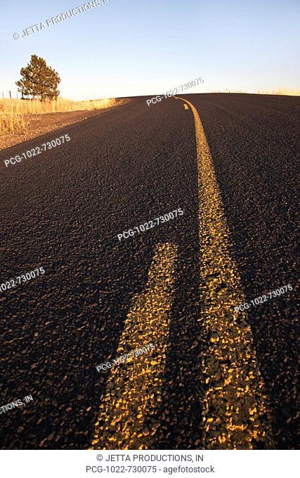 Two Lane Road Between Fields