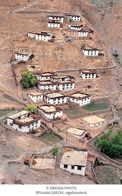 Kibber Village, Spiti Valley, Himachal pradesh, India, Asia