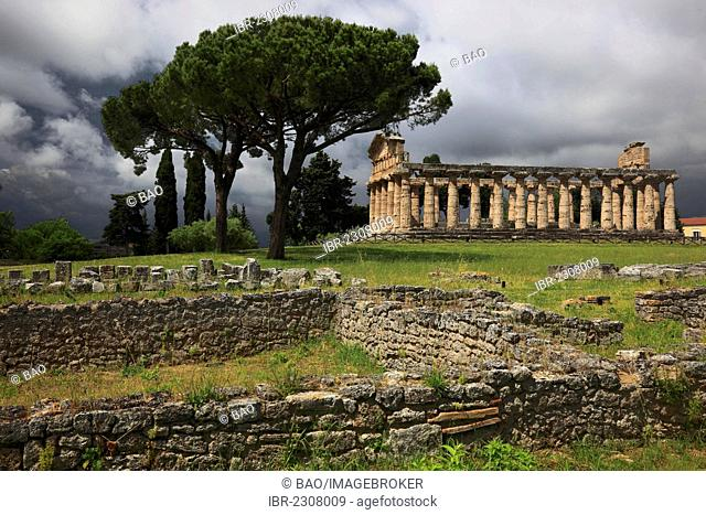 Athenaion, Temple of Athena, Paestum, Campania, Italy, Europe