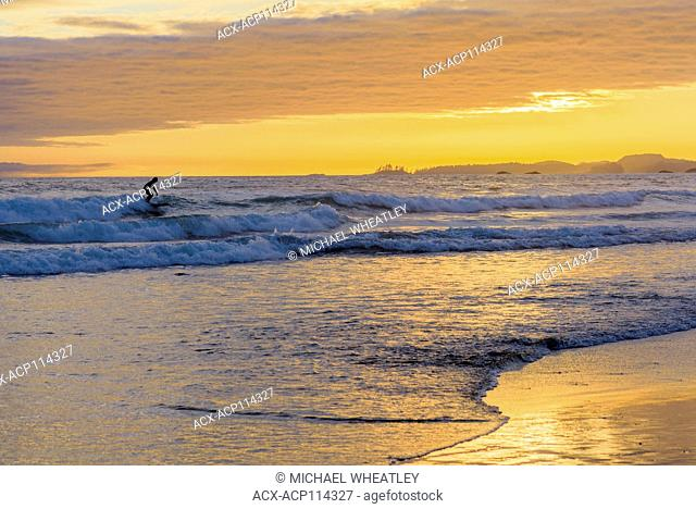 Surfer at sunset, Long Beach, Pacific Rim National Park, Vancouver Island, British Columbia, Canada