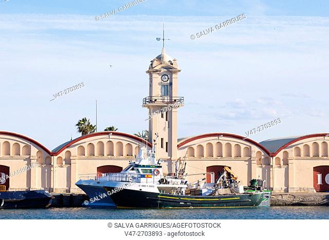Fishing boat moored in front of the fish market at the port of Gandia, Valencia, Spain. Europe