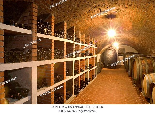 Austria winery Pichler old wine cellar