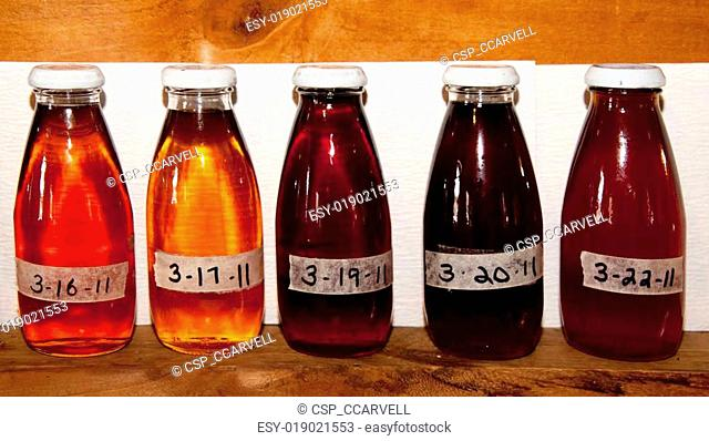 Sugar Maple Syrup Samples