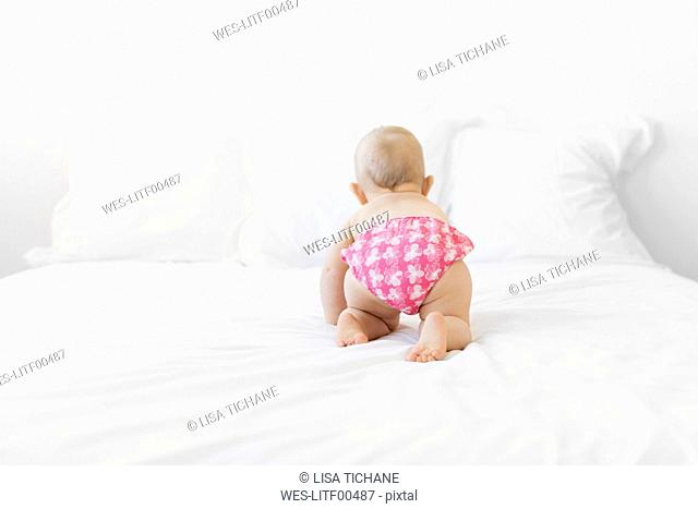 Baby girl crawling on bed, rear view