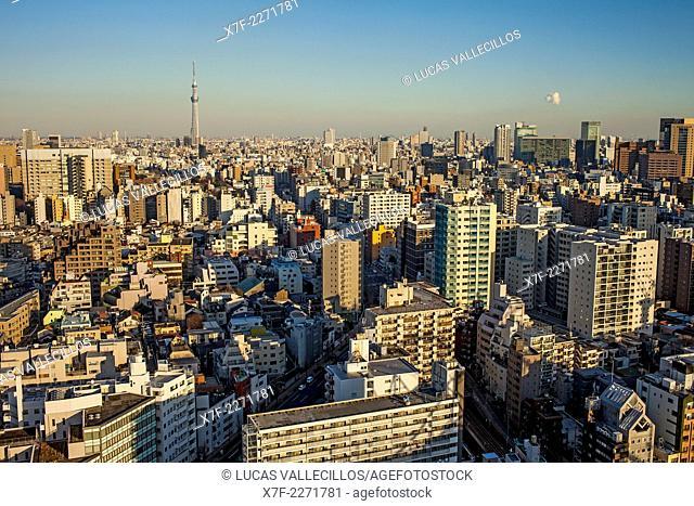 Skyline, in background Skytree tower, Tokyo, Japan