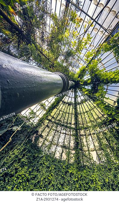 Greenhouse at the Royal Botanical Garden Madrid Spain