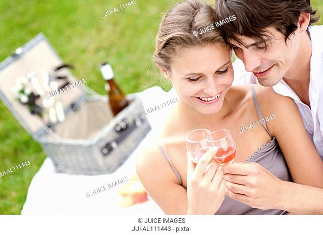 Young couple toasting glasses at picnic in park