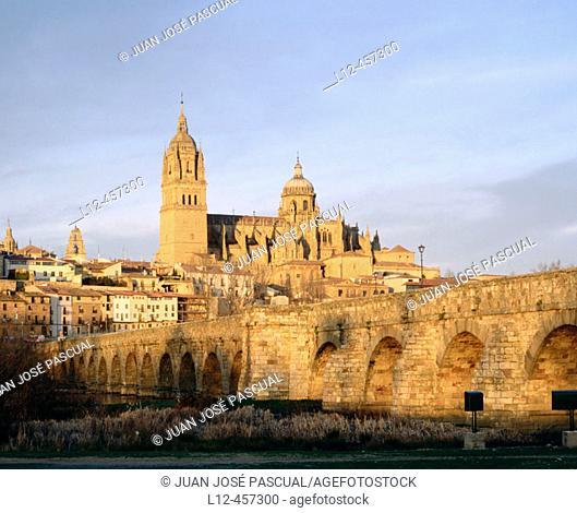 Roman bridge and cathedral, Salamanca. Castilla-León, Spain