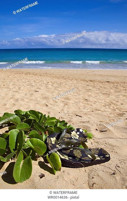 Vacation at Hawaii, Maui, Pacific, Hawaii, USA