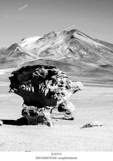 Stone tree rock formation in desert landscape of Altiplano with blue sky, Bolivia, black and white image