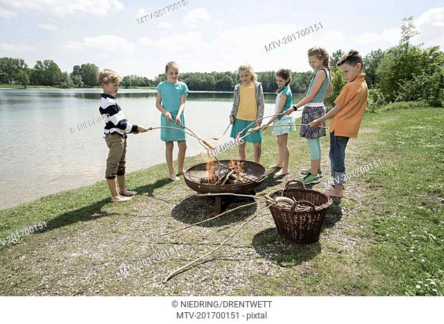 Group of friends preparing sausages on camp fire, Bavaria, Germany
