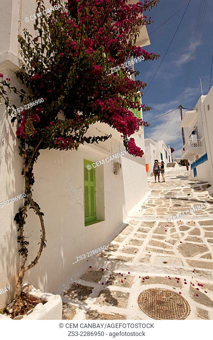 Tourists in the alley of town with bougainvilleas in the foreground, Naoussa, Paros, Cyclades Islands, Greek Islands, Greece, Europe