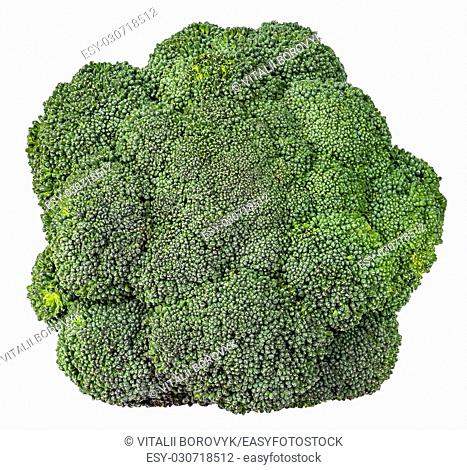 Large inflorescences of fresh broccoli top view isolated on white background