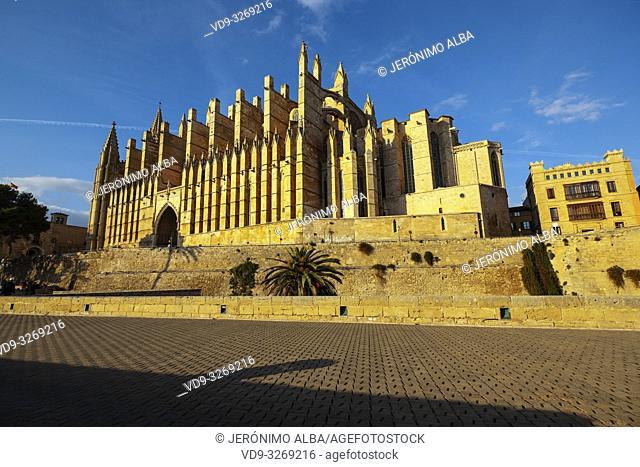 La Seu Cathedral, Palma de Mallorca. Majorca, Balearic Islands, Spain Europe