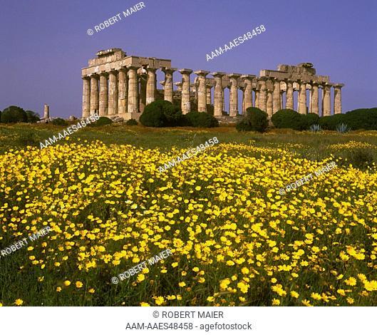 Greek Temple (Hera) at Selinunte, Sicily