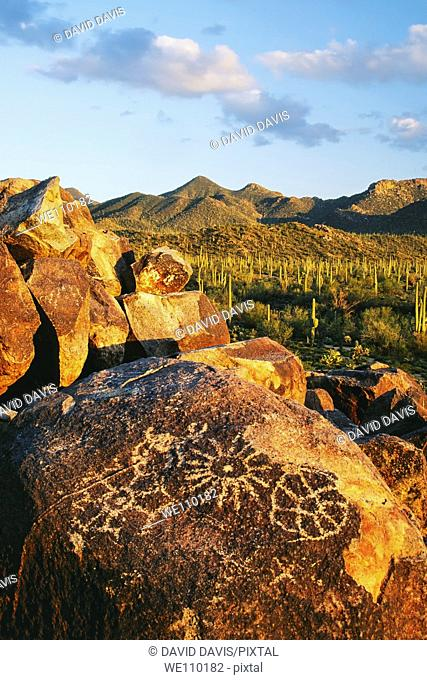 Petroglyphs on Signal Hill with the Tuson Mountaians in the background  Saguaro National Park, Arizona   The petroglyphs were most likely created by the Hohokam...