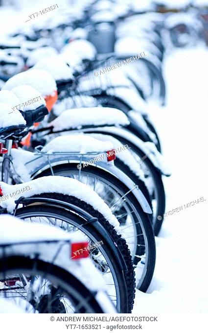 Many snow covered bicycles outside Fitzwilliams college, Cambridge