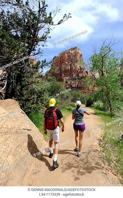 Hikers on Emerald Pools Trail Mount Zion National Park Utah