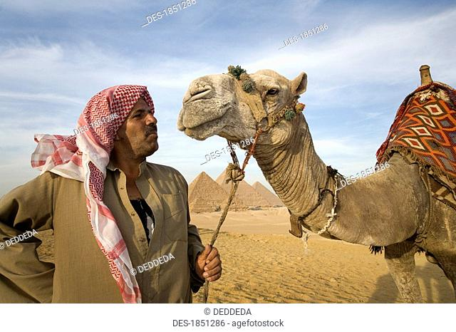 A man in the desert with a camel and the Pyramids in the background