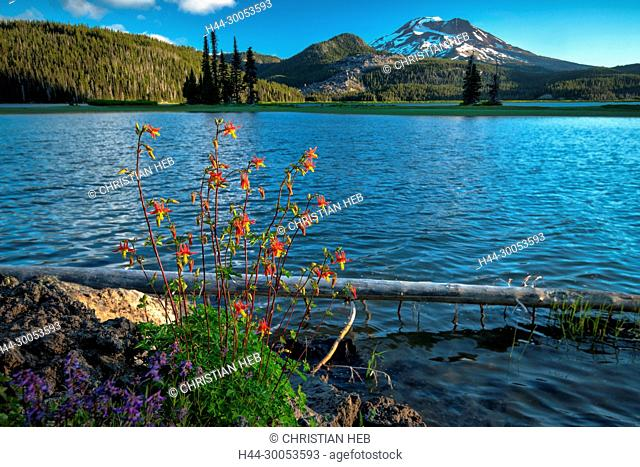 North America, USA, American, Pacific Northwest, Cascades, Deschutes National Forest, Sparks Lake and South Sister