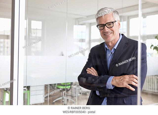 Portrait of smiling mature businessman in office