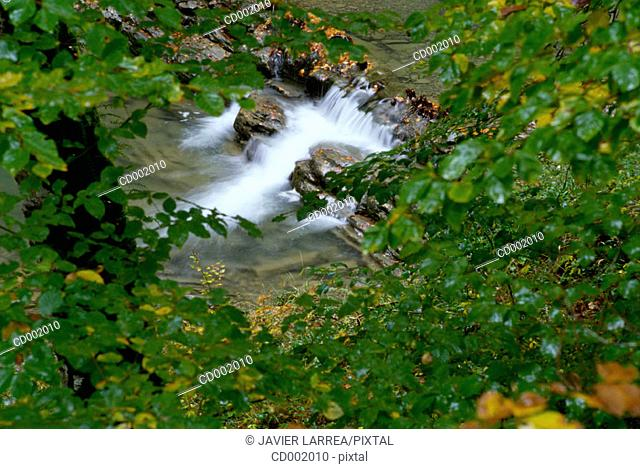 Irati River. Irati Forest. Navarre. Spain